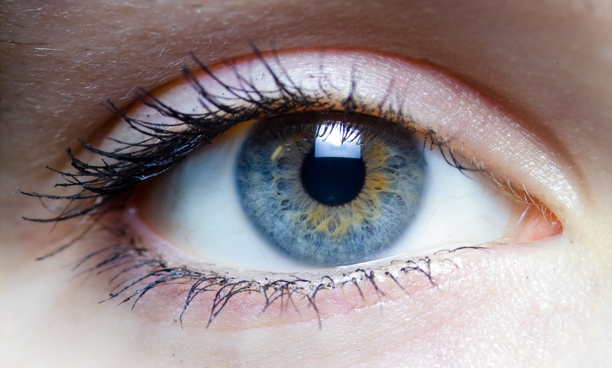 Did you know that visual first impressions are the most powerful type?